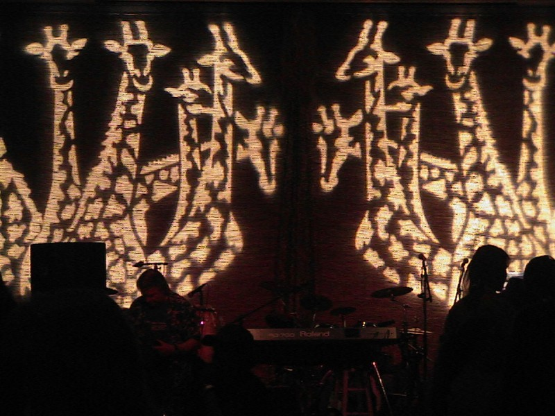 Giraffe Images Projected Onto Reed Wall